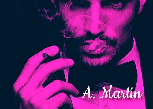 a martin novela erotica